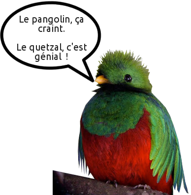 Humour de quetzal
